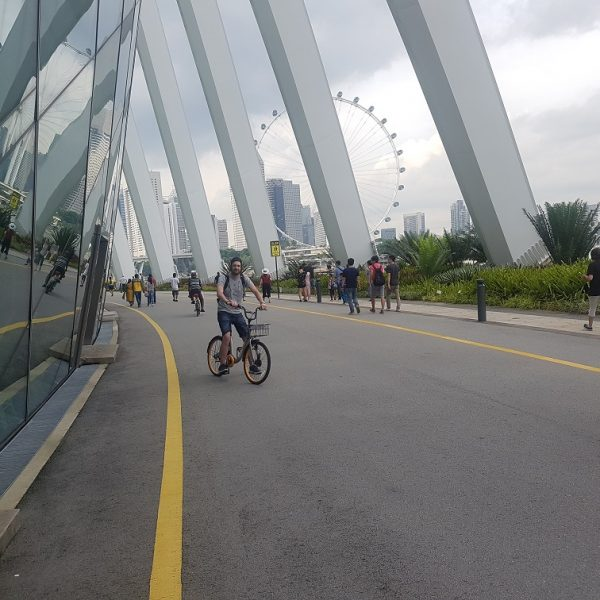 David on his bike in Gardens by the Bay